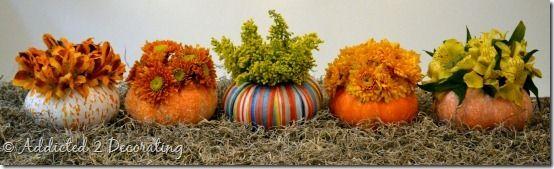 Mini pumpkin flower holders