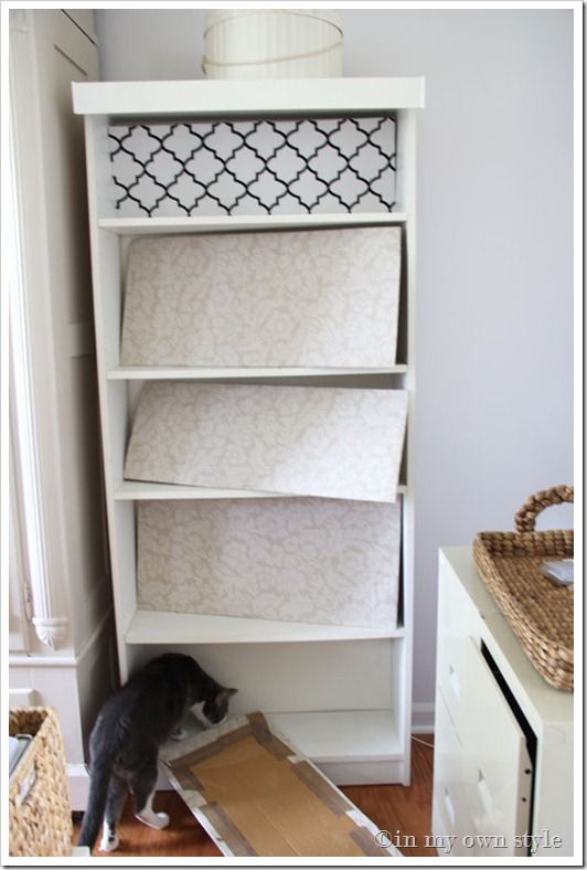 Wrap a piece of cardboard in fabric and put at back of bookcase instead of painting or wallpaper. Could change out as often as you wanted. Love that.