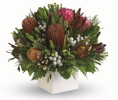 T8 Nunkeri. Immaculate pot arrangement of native flowers. Sure to capture the Aussie spirit.