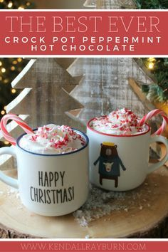The Best EVER Crock Pot Peppermint Hot Chocolate! It's SO easy to make, and so creamy and chocolaty! <3