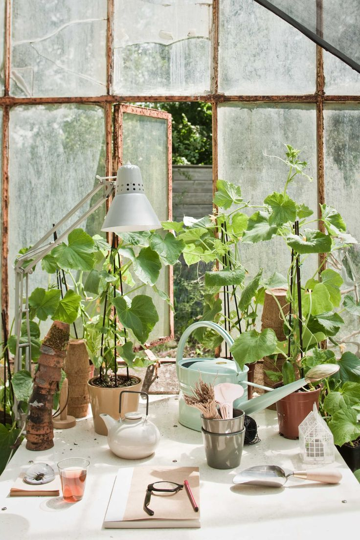 The greenhouse room spray