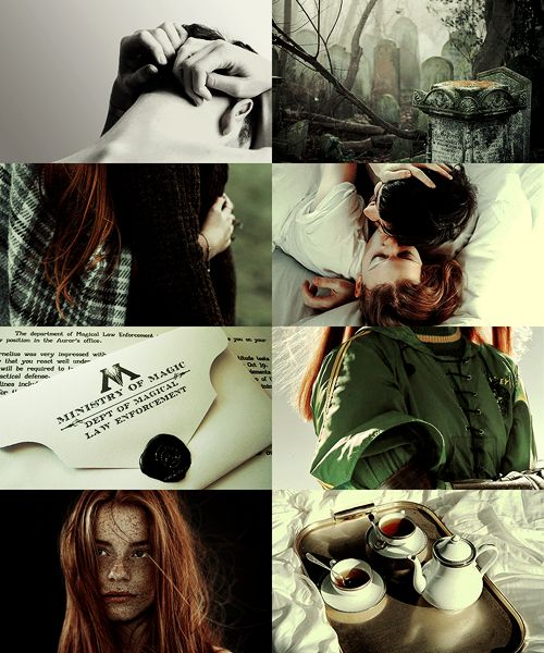 After the war | Harry and Ginny