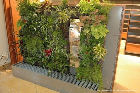 Sai Arquitectura Remodelaciones Bogotá Colombia Diseño de Jardines Interiores Paso a Paso Blog - Página web de saiarquitectura