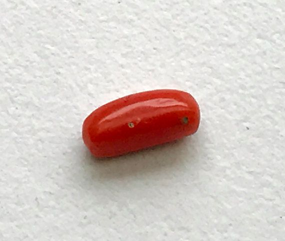 1.9 CTS Italian Coral Original Natural Coral by gemsforjewels