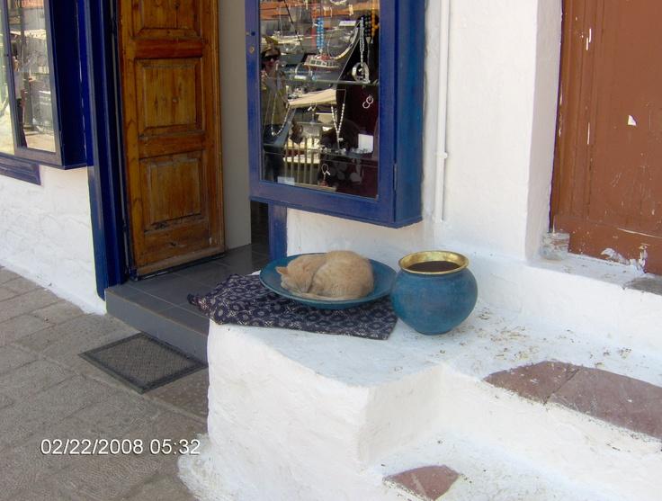 Hydra Island, Greece, 5.2008