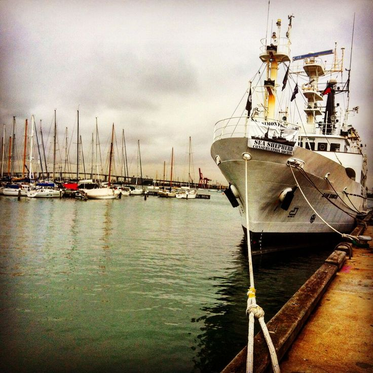 Sea Shepherd vessel docked at Williamstown