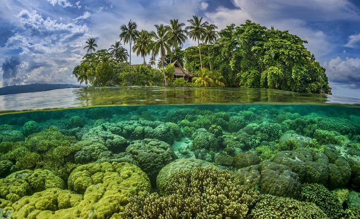Forget what travelling the Pacific used to be like – around the Solomon Islands it's still that way. These islands are laid-back, welcoming and...