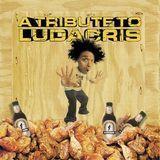 A Tribute to Ludacris [CD]