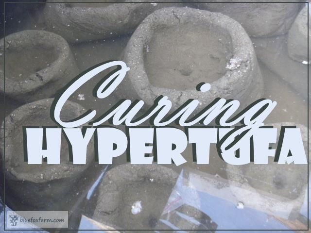 Curing Hypertufa - don't miss this crucial step... Garden Art | Rustic Crafts