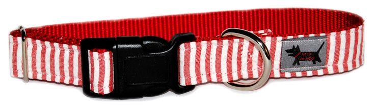 Candy Striper Dog Collar