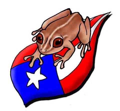 Boricuaphotography blogspot in addition Three Peurto Rican Conga Drum 398210075 in addition Collectionpdwn Puerto Rican Flag Art besides Collectionpdwn Puerto Rican Flag Art in addition Puerto Rican Music. on conga boricua