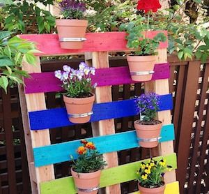 Shares Transform free pallets into creative and beautiful furniture, decorations, planters and more! There are over 150 easy pallet ideas here to give your home and garden a personal touch. Before we dive into these projects, here is some helpful information: You can get pallets FREE (or very cheap) from: Craigslist or Facebook's Marketplace. A lot of the time people just put …