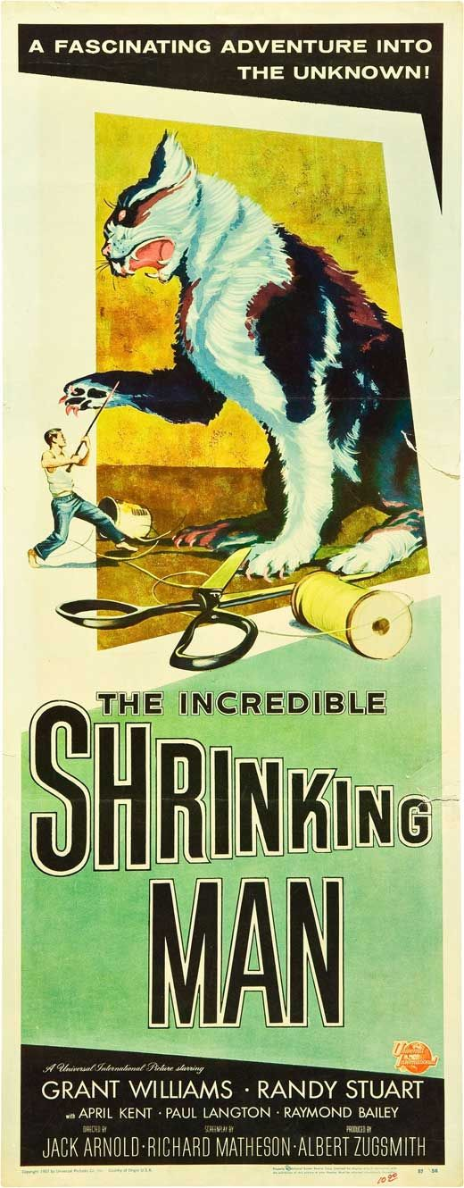 Jack Arnold directed the classic The Incredible Shrinking ...