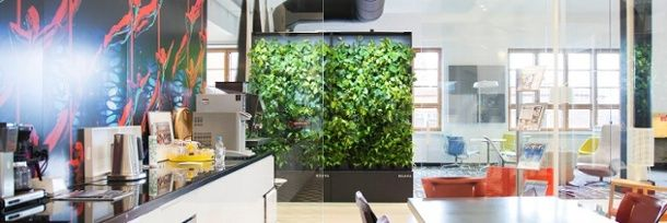 Enhance your workspace with a smart green wall.