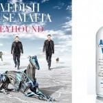 De dj's van Swedish House Mafia hebben een nieuw nummer ontwikkeld genaamd 'Greyhound'. Het nummer is gemaakt voor het merk Absolut Wodka en is de soundtrack bij de wereldwijde reclamecampagne van het Zweedse wodka merk Absolut.