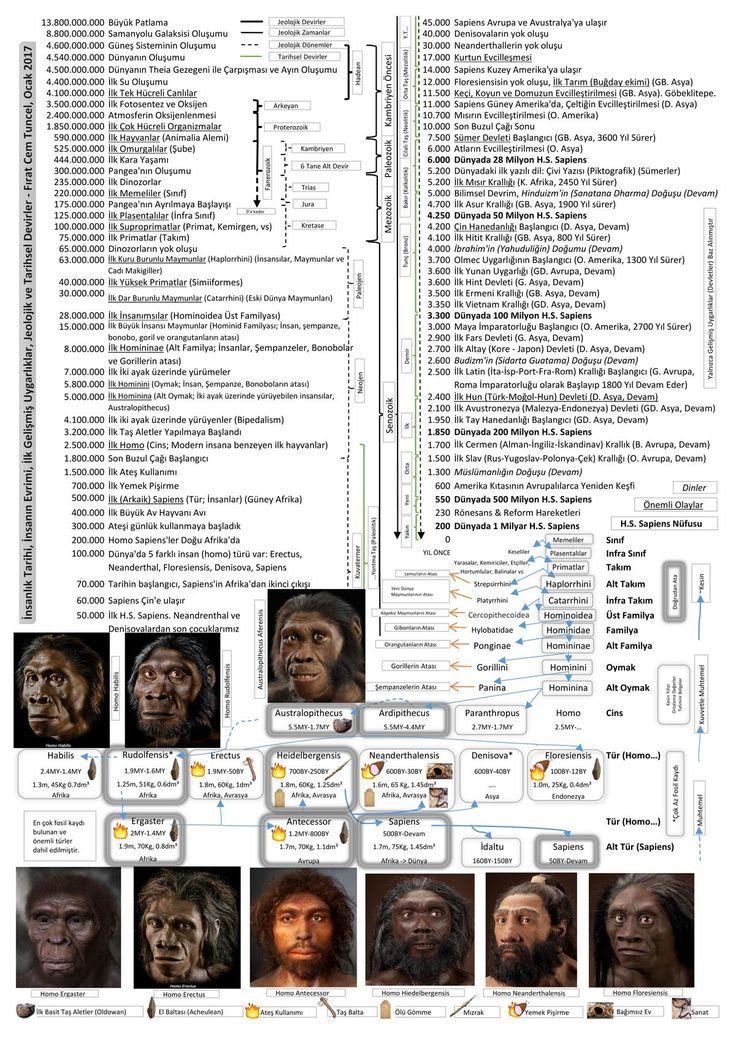 Okurlarımızdan Fırat Cem Tuncel'in hazırladığı bu ilginç görselde zamanın uzun tarihini kısa başlıklar halinde inceleyeb... – Evrim Ağacı