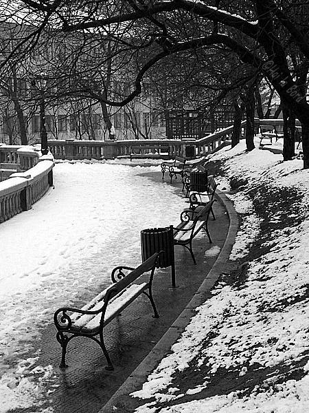 banci iarna piatra neamt