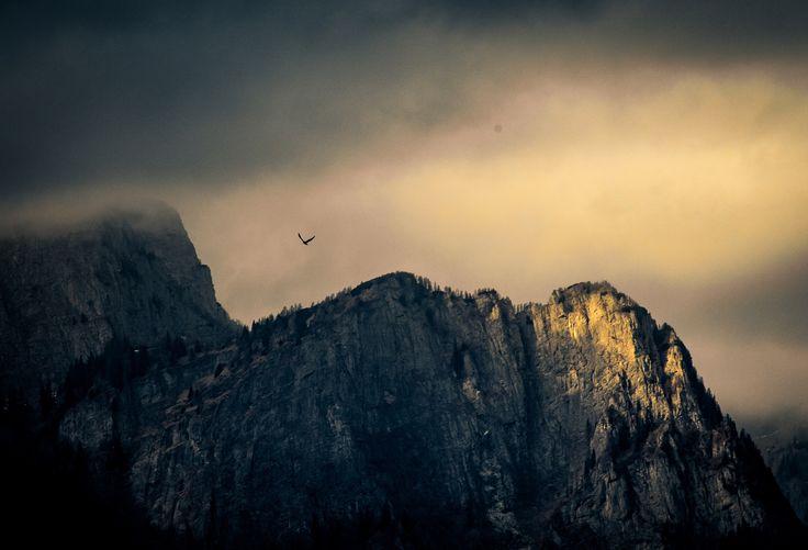 Flying close to sunset - Photo taken from Sinaia, Romania.