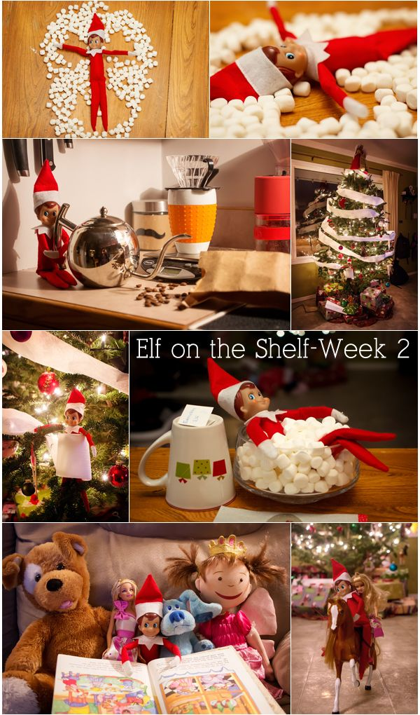 Elf on the Shelf ideas... i will probably never do an elf on the shelf but the creativity of the ideas amuses me.