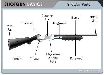 guns shotguns guns ammo guns knives stuff guns 2a stuff shared guns. Black Bedroom Furniture Sets. Home Design Ideas