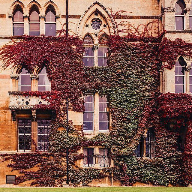 Колледж Christ Church в Оксфорде - это концентрат волшебства. Мало того, что в залах и дворе колледжа снимались фильмы о Гарри Поттере, так именно здесь жили и работали Дж. Р. Толкиен, Чарльз Додгсон (Льюис Кэрролл), К.С.Льюис. Просто прорва чудес. В таких-то интерьерах! #ruglish_trip #hobopeebachashashulisenglandtrip