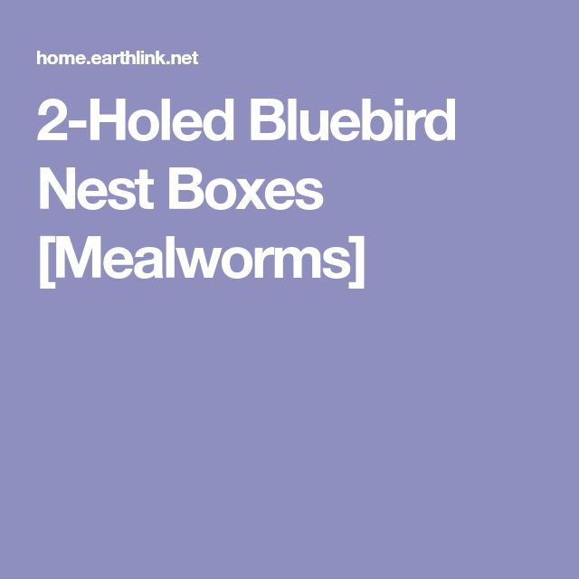 2-Holed Bluebird Nest Boxes [Mealworms]