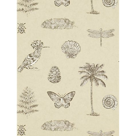 Buy Sanderson Cocos Wallpaper Online at johnlewis.com £52