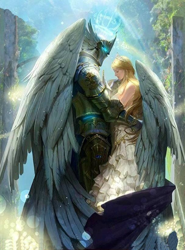 armored angel champion knight