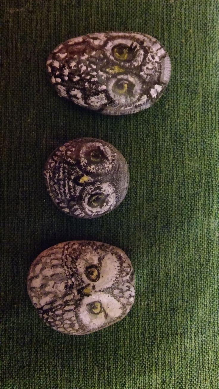 sowy - rysowane na kamieniu kredką ołówkową i pastelą