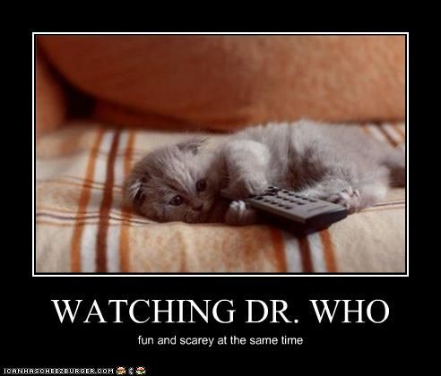 Watching  Dr. Who: Animal Planets, Discovery Channel, Kitty Cat, Adorable Kittens, Doctorwho, Funny Kittens, Doctors Who, Cuddling Buddy, Scary Movie