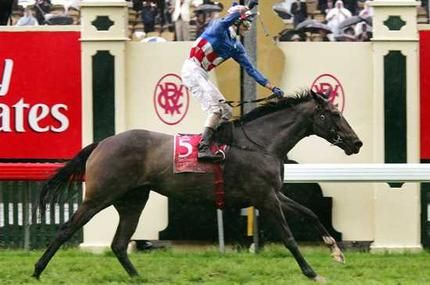 Double joy for Makybe Diva - Horse Racing - www.theage.com.au