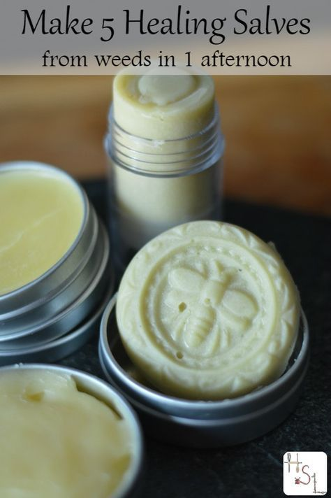 Make 5 healing salves in one afternoon with the weeds from your garden to treat bug bites, chapped skin, sunburn, sore muscles, and bruises. http://homespunseasonalliving.com/make-5-healing-salves/