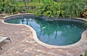 98 best images about pool on pinterest swimming pool for Pool builders jacksonville