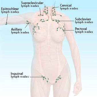 Instant Remedies for Swollen Lymph Nodes : causes and symptoms  Remedies for Swollen Lymph Nodes – Swollen lymph nodes are frequently referred as swollen glands and can create a living hell for you to survive. All diseases and infections have their symptoms and effects but regarding swollen glands, the physical symptoms are numerous.   #SwollenLymphNodes #Lymphoma #homeremedies  #swollenglands #NodesMedicine #lymphnodes #lymphnodesneck #lupussymptoms