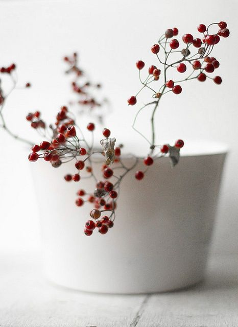 a branch of red berries in a white bowl.