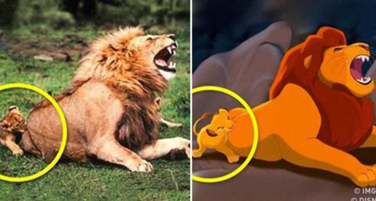 12 Photos Of Cartoon Characters Found In The Real World