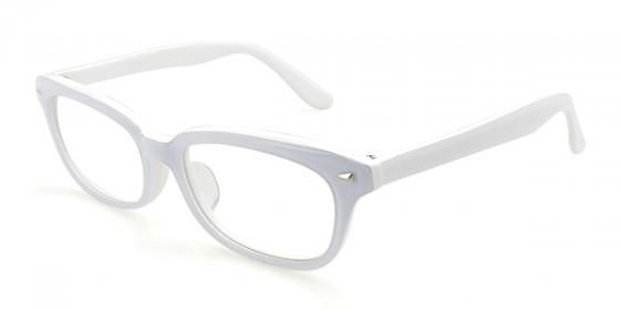 Wayfarer Computer Glasses | United Nations System Chief