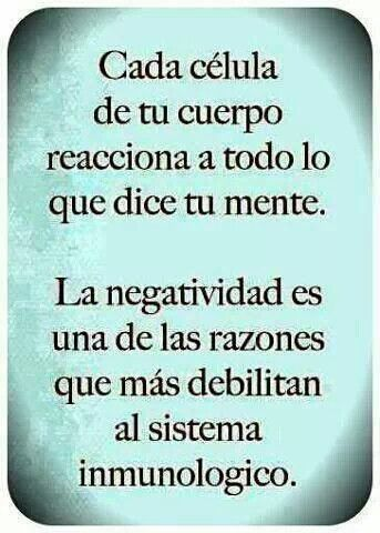 Image result for positive organizing quote in spanish