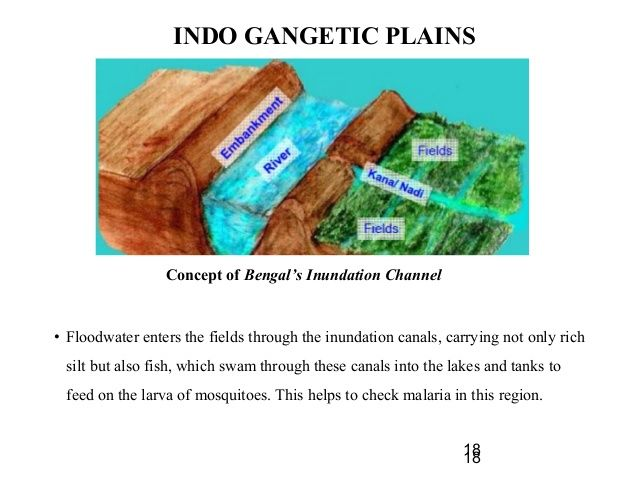 INDO GANGETIC PLAINS  • Floodwater enters the fields through the inundation canals, carrying not only rich  silt but also ...
