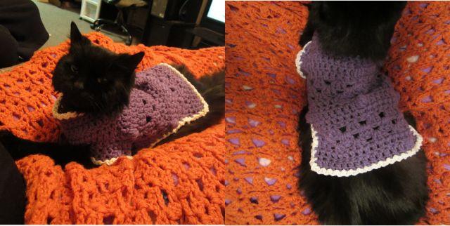 Free Crochet Pattern Kitty Cat Or Small Dog Sweater Pet