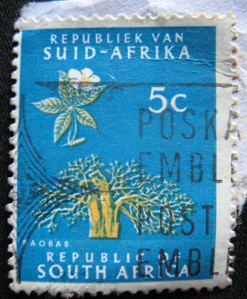 Used 5c Baobab Tree South African Stamp