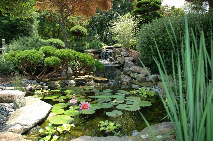 53 best images about japanese garden designs on pinterest for Japanese garden pond design