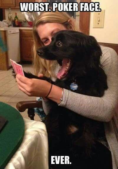 Poker face....not!