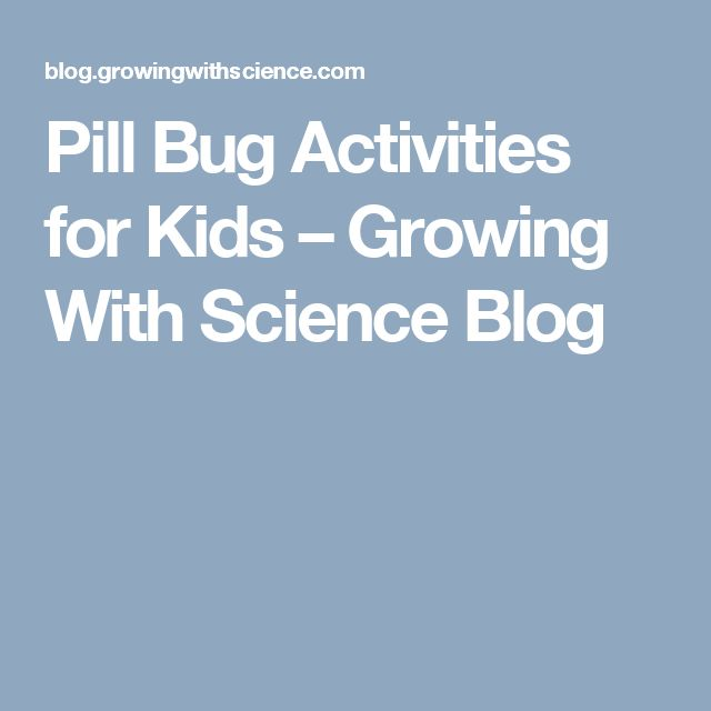 Pill Bug Activities for Kids – Growing With Science Blog