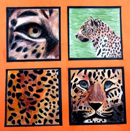 Check out student artwork posted to Artsonia from the Four Views of an Animal (Art I) project gallery at Denver Community Schools.