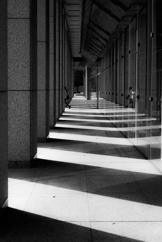Tadashi Onishi - Zebra The City | LensCulture