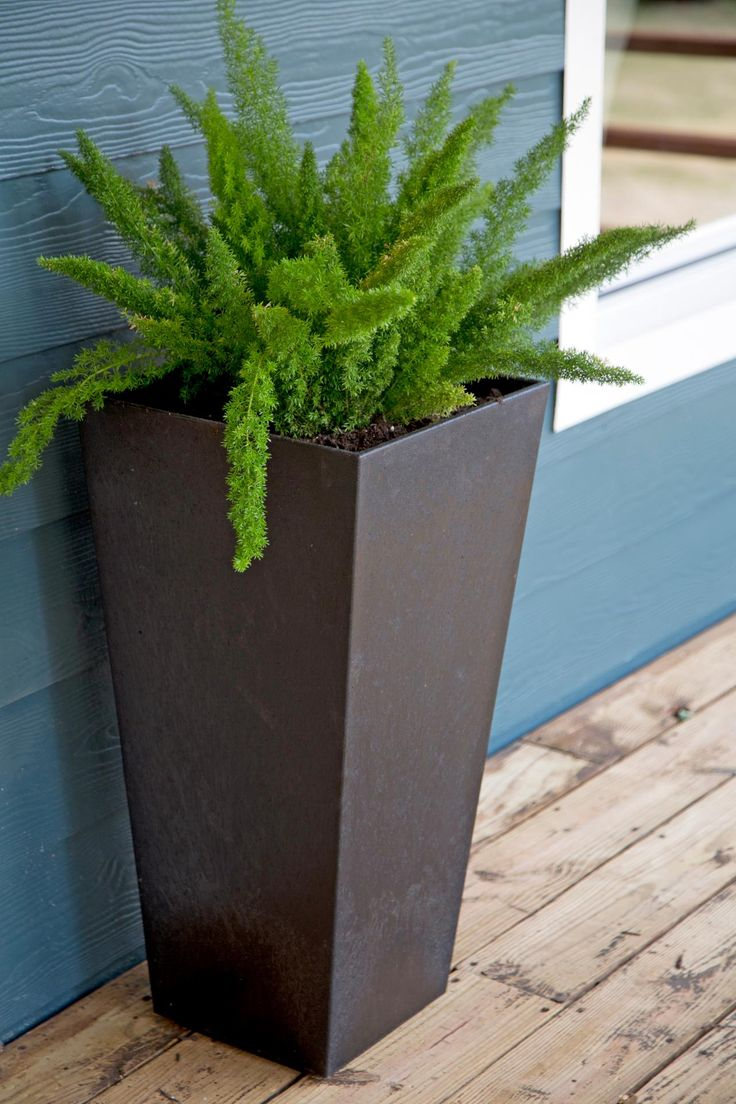 best  contemporary planter accessories ideas on pinterest  - fixer upper a craftsman remodel for coffeehouse owners black planterstallplantersmodern