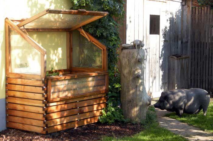 Hochbeet mit Frühbeet als Anlehngewächshaus oder Treibhaus mit Minischwein Rosalie