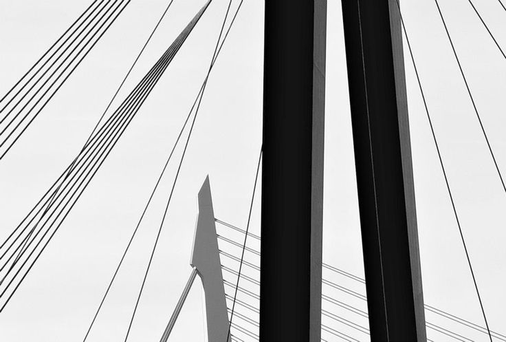 Erasmusbrug en Willemsbrug