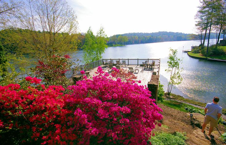 50 Best Cabin Rentals Near Asheville Nc Images On